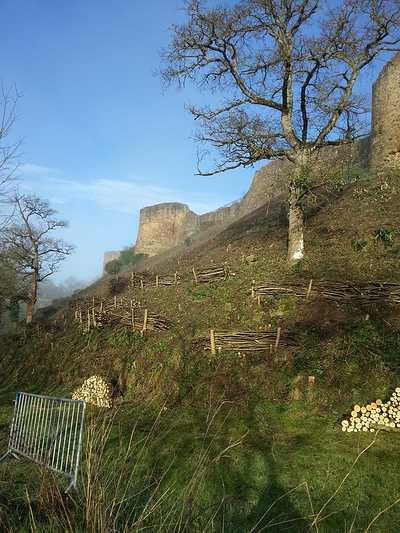 Recépage et création de fascines sur la butte du château de Lehon 0